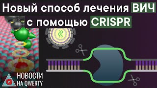 CRISPR против ВИЧ, МРТ атома и черепа «чужих». Главное на QWERTY №91