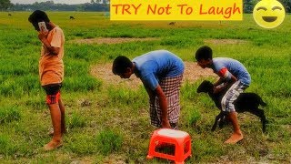 Top 10 Funny Video Clip Comedy prank Try Not To Laugh Or Grain