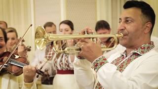 Download Cristi Tractor & Orchestra Lautarii - Hora cumetrilor