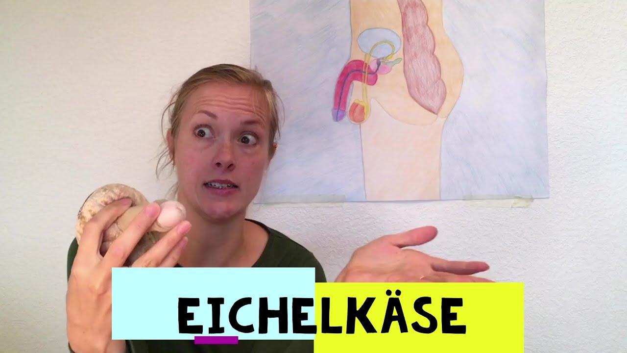Körper-Basics: Was ist Eichelkäse? - YouTube