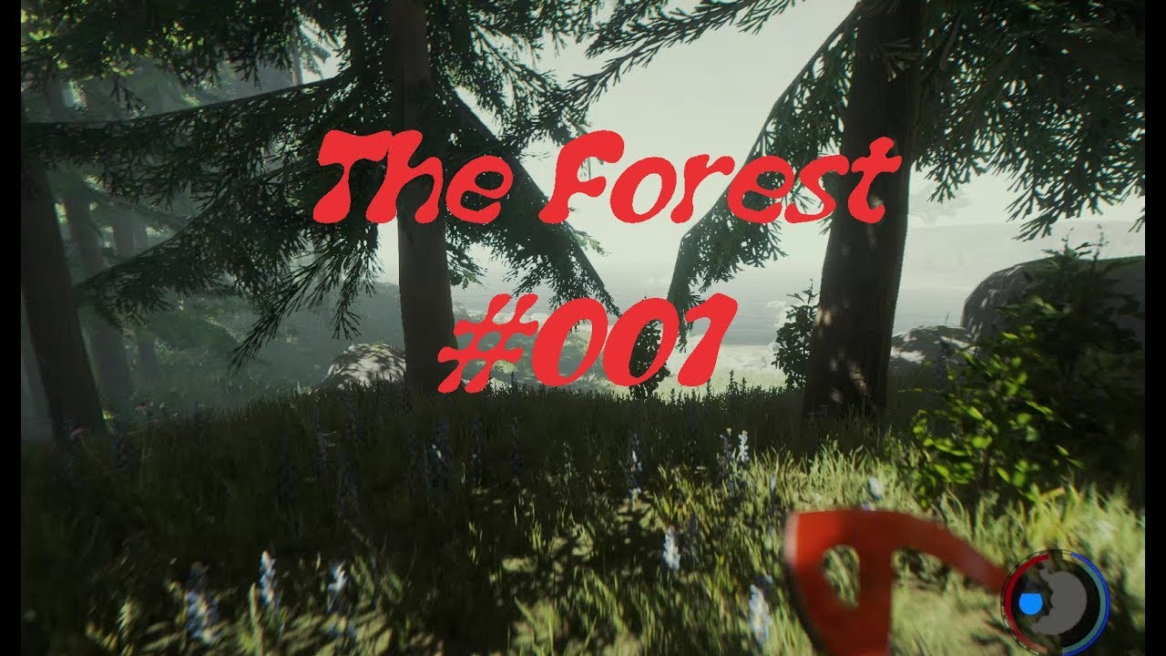 the forest #001 bude im wald bauen! - youtube