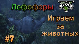 GTA 5 - Лофофоры.Превращаемся в животных №7