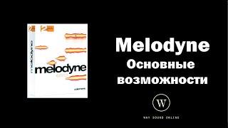 Основные возможности Melodyne (Celemony Melodyne editor) RUS