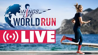 Wings for Life World Run 2021   Taureau rouge