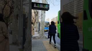 301번대우경제형저상신차잠실역(롯데월드)버스정류장진입영…