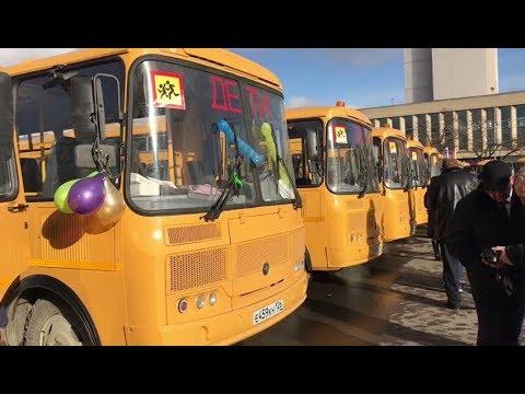 Новые автобусы едут в сельские школы