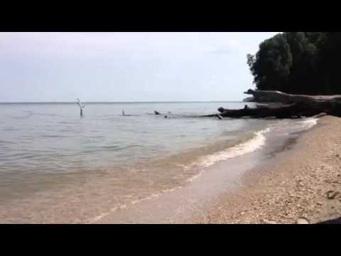 One Minute at Brownies Beach