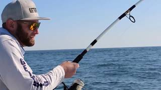 Live Bait Fishing for Striped Bass