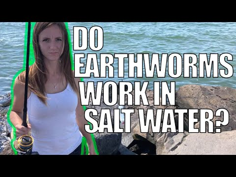Do Worms Work In Saltwater For Fishing?