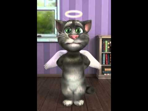 Iphone 6 Default Wallpaper Talking Tom Sings The Stupid Song Youtube