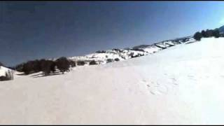 Snowmobile ride out of Avalanche