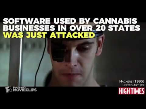 Hackers Attack Cannabis Dispensary Software