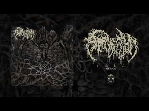 APPARITION - Nonlocality (official audio)