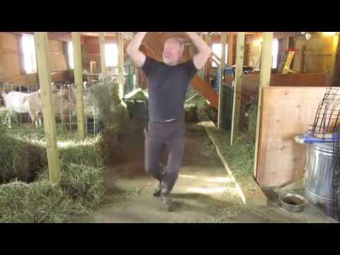Фермири козів відео фото 696-214