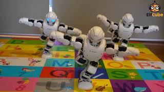 ElfCube Robot course - Alpha Pro dance