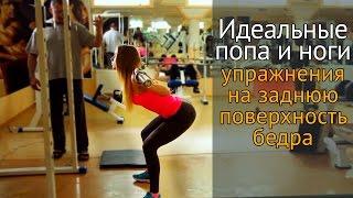 Идеальная попа и ноги: упражнения на заднюю поверхность бедра(, 2015-05-21T08:59:28.000Z)