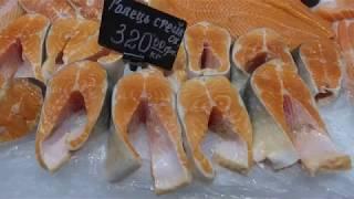 Лососевые рыбы (Сёмга, форель, голец)