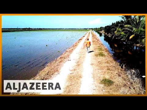 ???? Asia Pacific: Agriculture, population growth spike water needs | Al Jazeera English