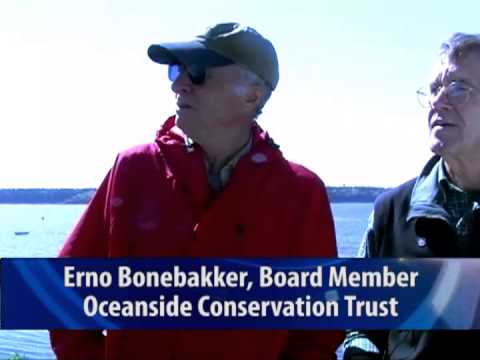 Oceanside Conservation Trust - Cliff Island Monitoring