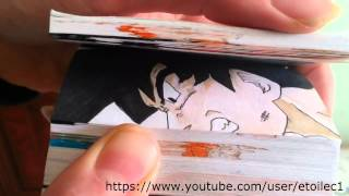 Dragon Ball Z Flipbook Episodio 1 Goku SSJ5 vs Omega Shenron