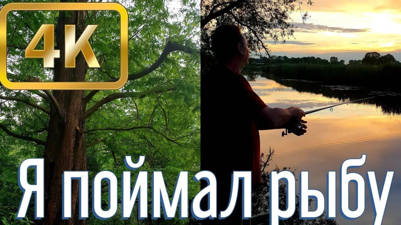 ОТДЫХ НА ДАЧЕ В ГЕРМАНИИ/РЫБАЛКА/РЕКА/УХА/ОТПУСК