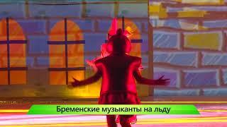 Ледовое шоу. 09.01.2018. ИК