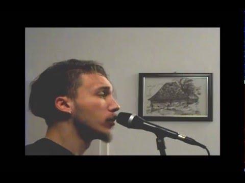 Cemetery Gates - Pantera - vocal cover - Milos Vasic