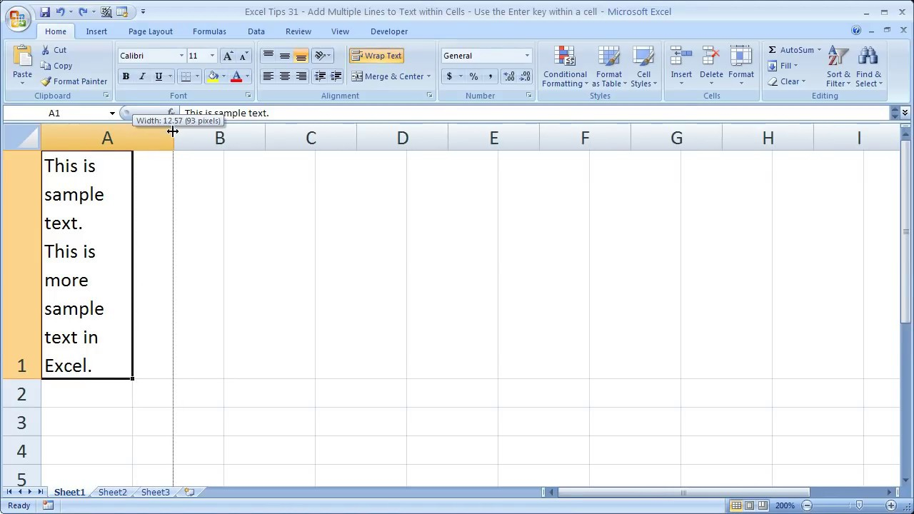 Excel Tips 21 - Add Multiple Lines to Text within Cells - Use the Enter key  within a cell