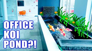 *OFFICE KOI POND* W/ Color-Changing Lights