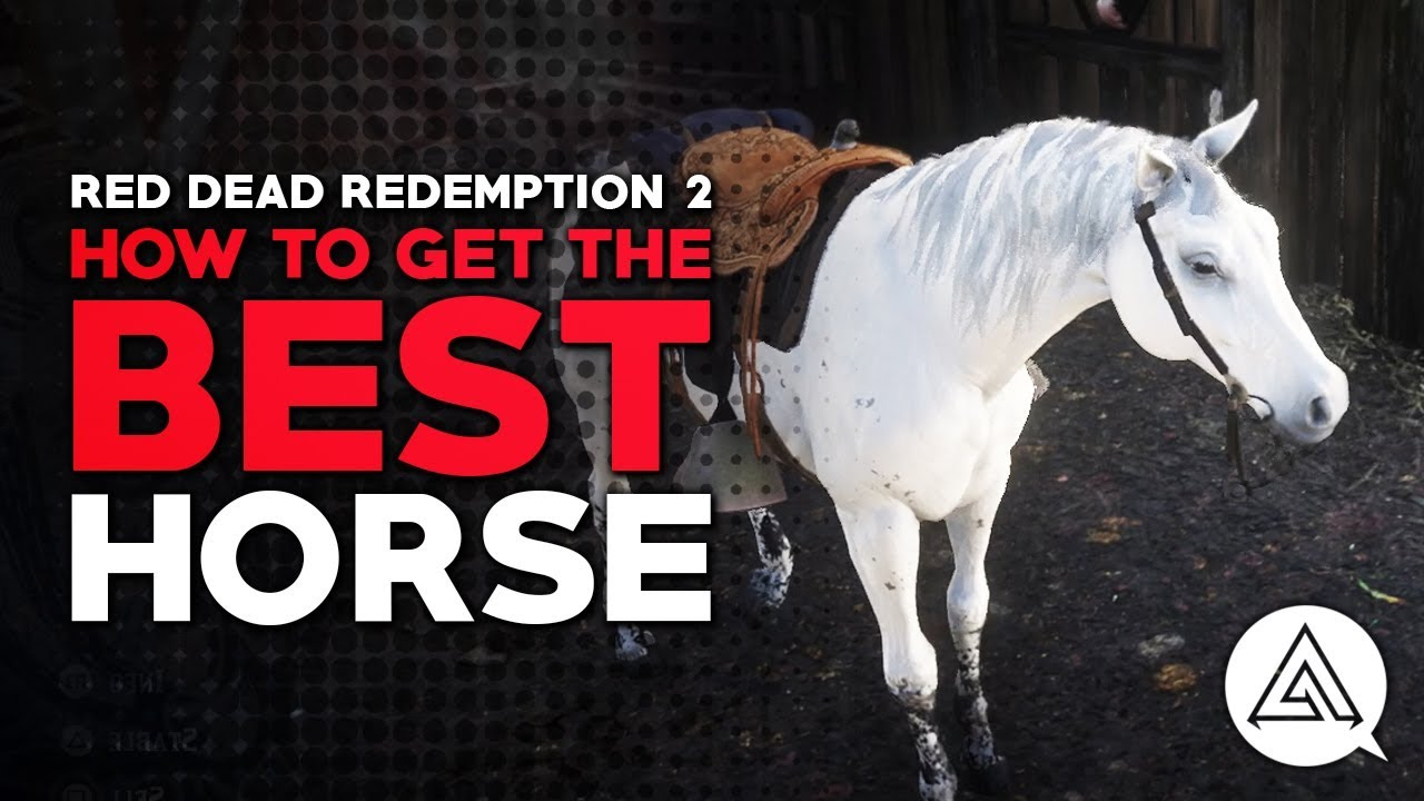 Red Dead Redemption 2 How To Get The Best Horse Youtube