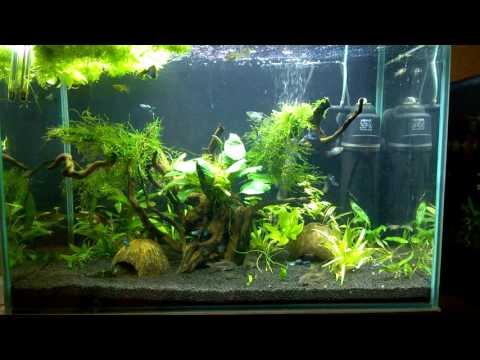 Светодиодная подсветка наших аквариумов