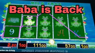 THE BABA IS BACK WILD FROG  i am The best MERKUR MAGIE M-BOX