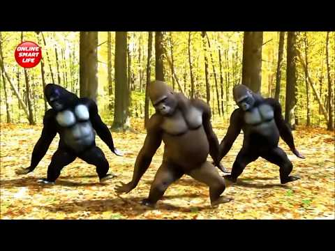 Latest Gorilla Dance  DJ Video - Rikshawala (2017)