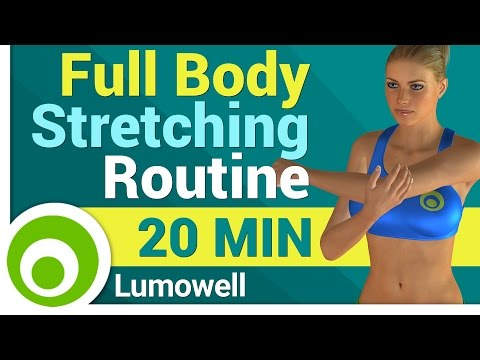 Full Body Stretching Routine