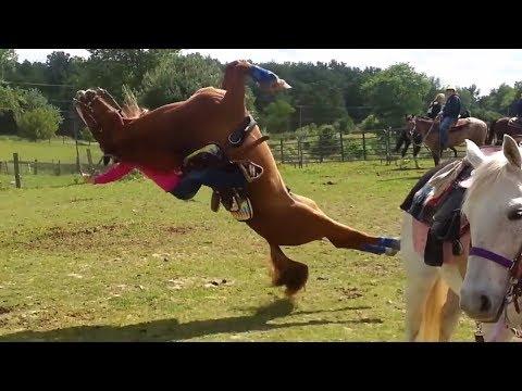 Fail Horse Flips Backwards Onto Rider