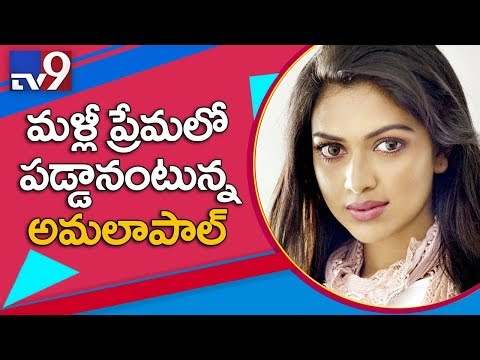 Amala Paul Falls In Love With A Guy Who Is Not From Film Fraternity? - TV9
