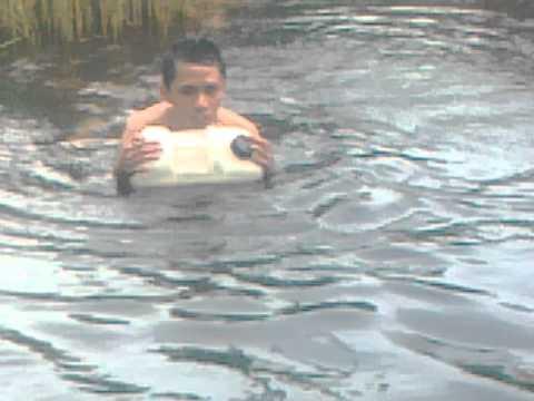 ikan duyung terdampar - photo #29