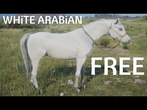 Red Dead Redemption 2 How To Find & Catch White Arabian Horse Walkthrough Guide Lake Isabella
