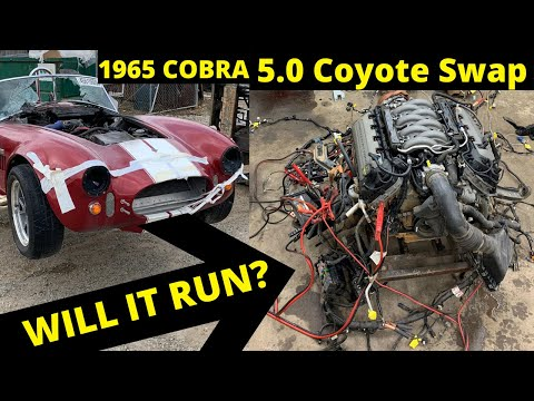 1965 Cobra Coyote Swap First Start Fire Damage from Copart