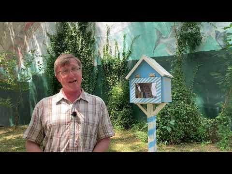 Five Minute Histories: Little Free Libraries of Baltimore