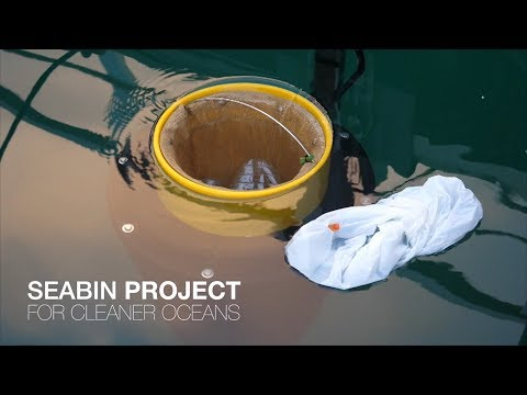 Will Seabins save our oceans? The Seabin Project