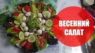 Полезнейший салат с помидорами, огурцами, сыром моцарелла, зеленью, луком. Полезно и быстро. Рецепт.