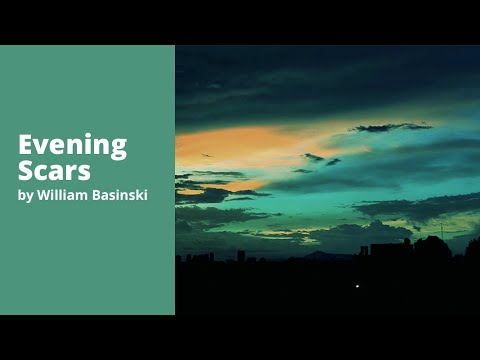 William Basinski - Evening Scars