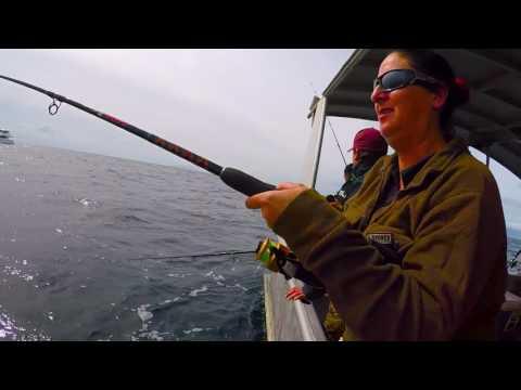Phoenix Charters Hauraki Gulf Workup Fishing Oct 2016