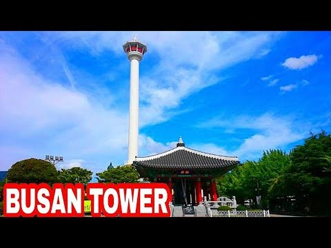 BUSAN TOWER IN AUTUMN :  TRIP TO KOREA