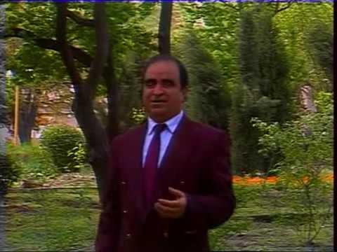 İslam Rzayev   Gülnarə