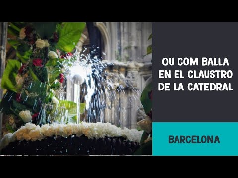 L'ou com balla al claustre de la Catedral de Barcelona