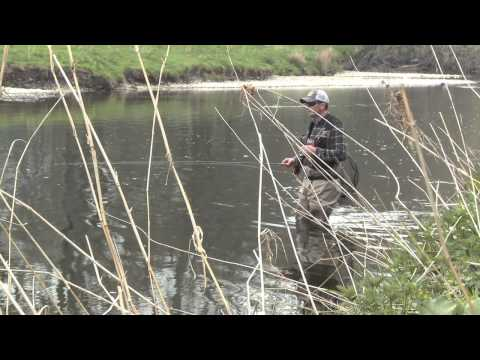 The Big Fish  Fly Fishing The Borders For Wild Brown Trout