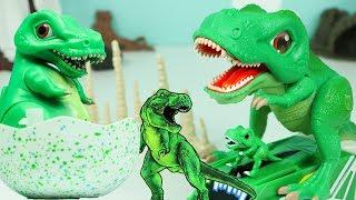 공룡메카드 티라노 총출동 공룡알 티라노사우루스 공룡장난감 4개 전부출동! Dino Mecard tiny dinosaur Tyrannosaurus Egg Toys