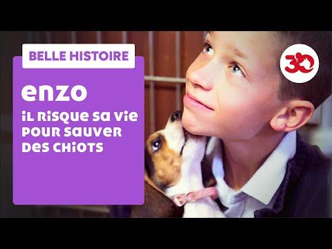 Enzo a sauvé la vie de chiots beagle : il en adopte un !